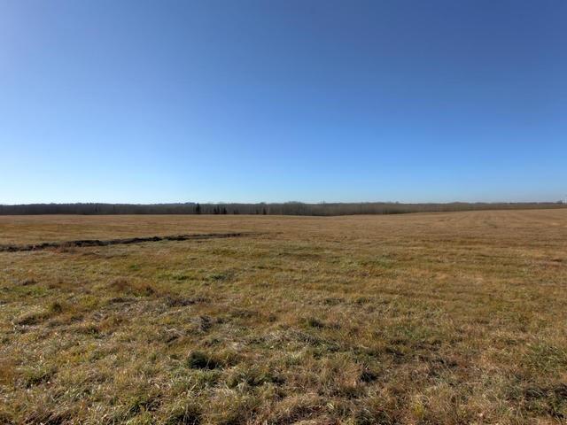 53134 Rr 225, Rural Strathcona County, Alberta  T8A 4T7 - Photo 25 - E4175925