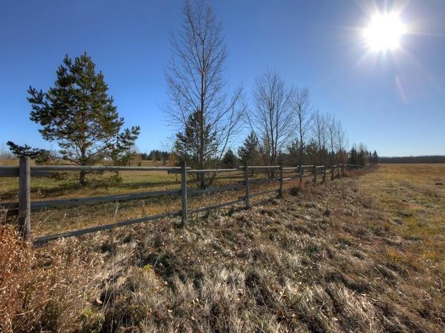 53134 Rr 225, Rural Strathcona County, Alberta  T8A 4T7 - Photo 27 - E4175925