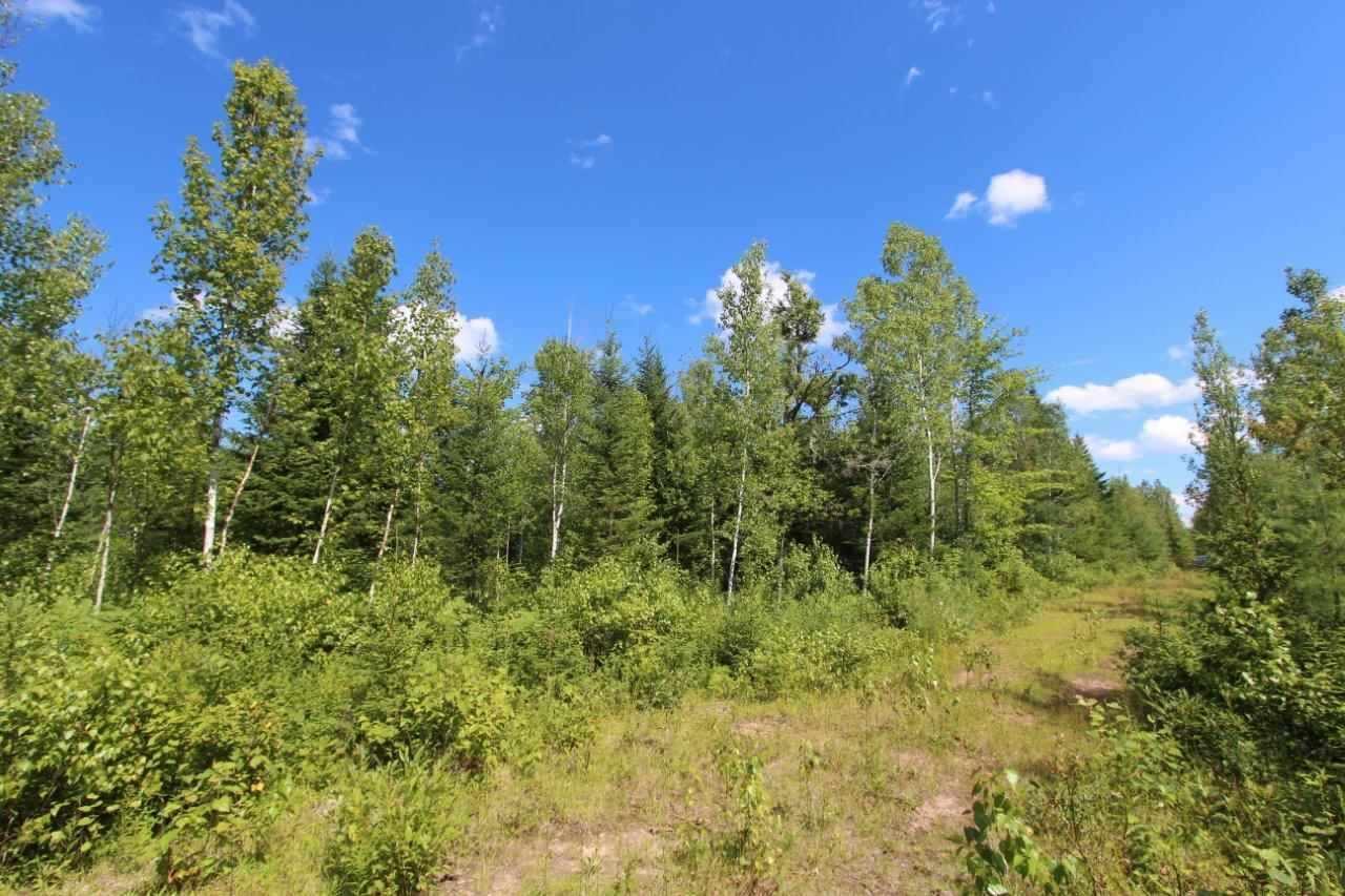 Twp Rd 614 Rr 225, Rural Thorhild County, Alberta  T0A 3J0 - Photo 1 - E4176878
