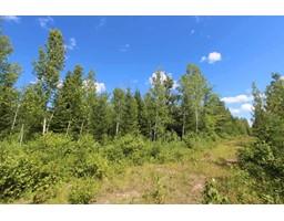 Twp Rd 614 RR 225, rural thorhild county, Alberta